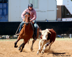 Cody Ryan riding Brenwon Stretch winners of the Gelding Incentive Sale Draft at Dalby