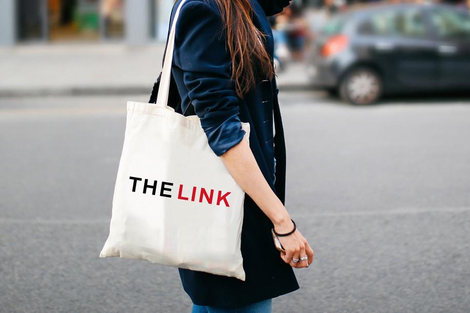 thelink03.jpg