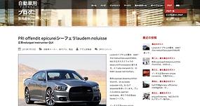 Web Design/WordPress/Joomla
