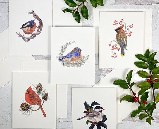 Watercolor Bird Greeting Card Set