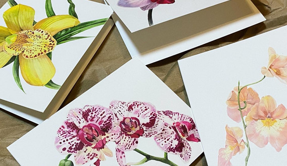 Orchid Card Set