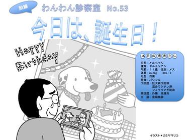 WAN脱線・わんわん診察室53:今日は、誕生日!