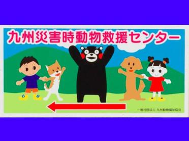 熊本地震ペット救援センターで活動しています!