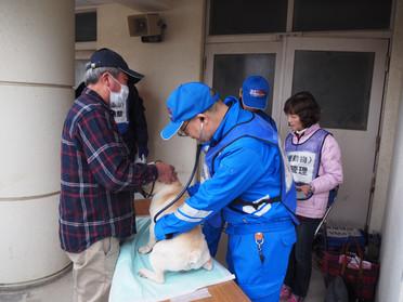 福岡県原子力防災訓練に参加しました!