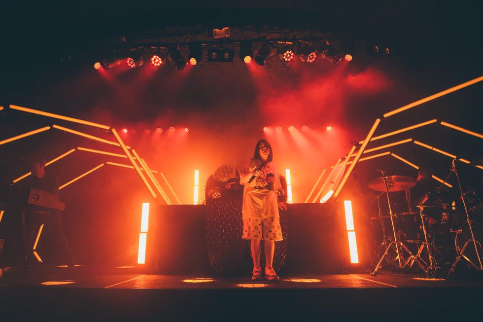 Billie Eilish 2018 Tour