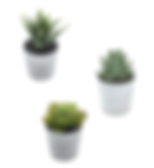 Desk Trio Artificial Plants
