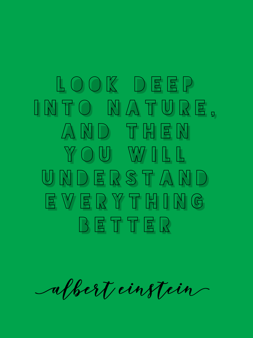 nature albert einstein.PNG