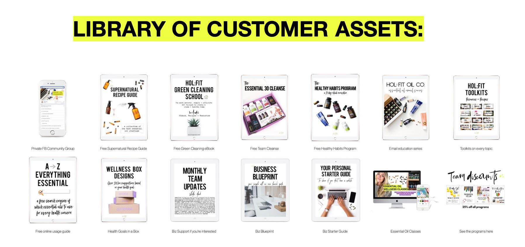 Customer Assets.png