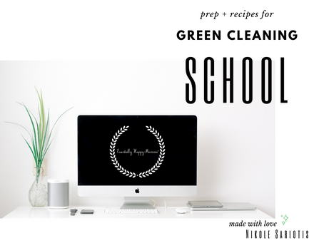 Green Cleaning School