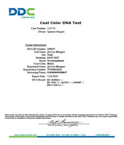 Jet Color Gene Test