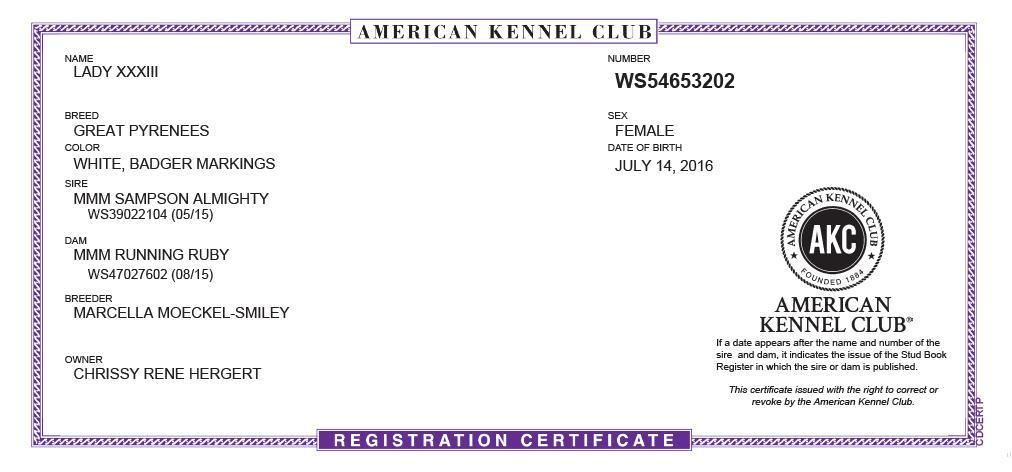 Lady AKC Certification