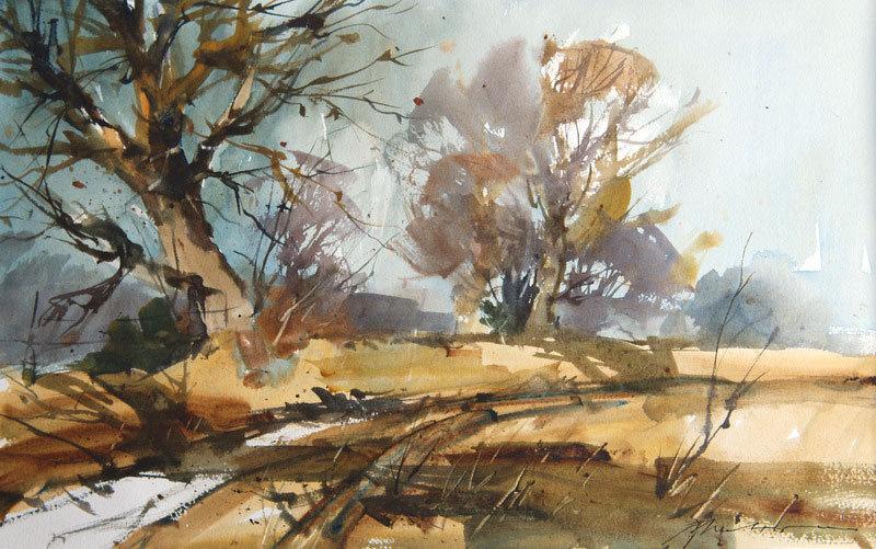 Beech trees on Exmoor