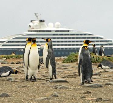 Scenic Eclipse anuncia retomada de expedição ultra luxuosa à Antártica!