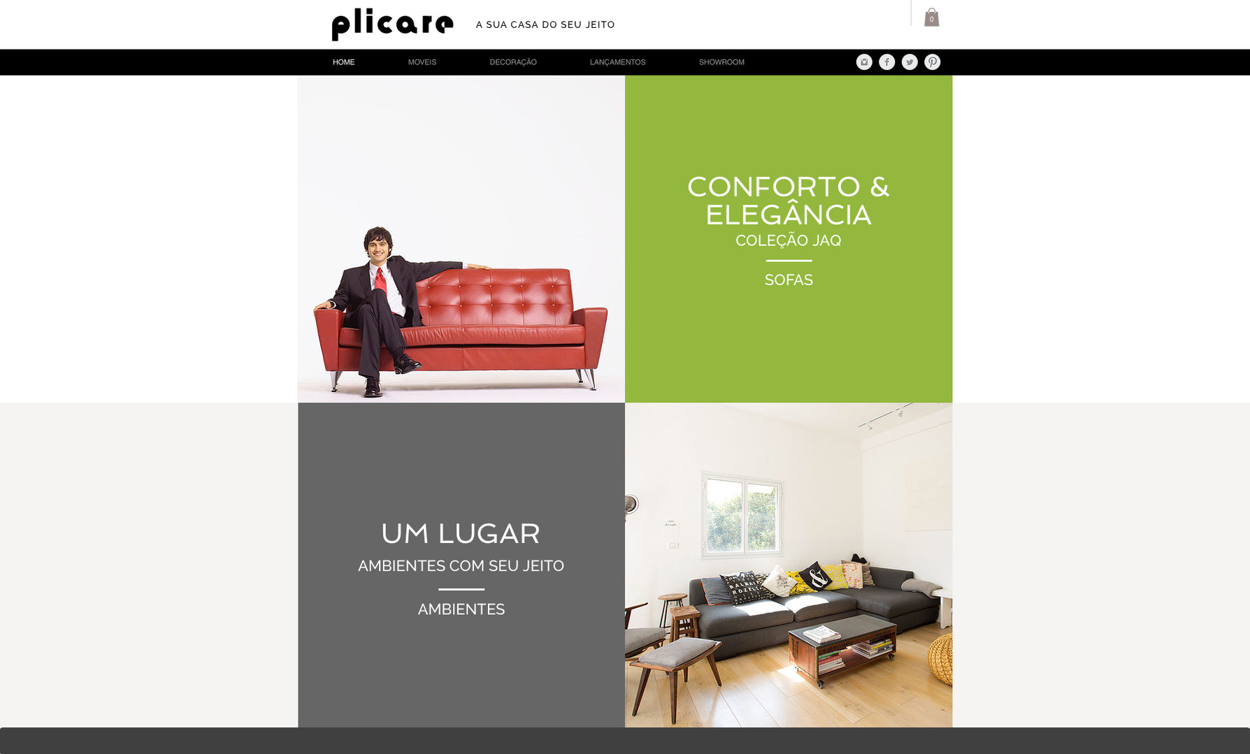 diretordeartefreela-sites_0013_plicare.j