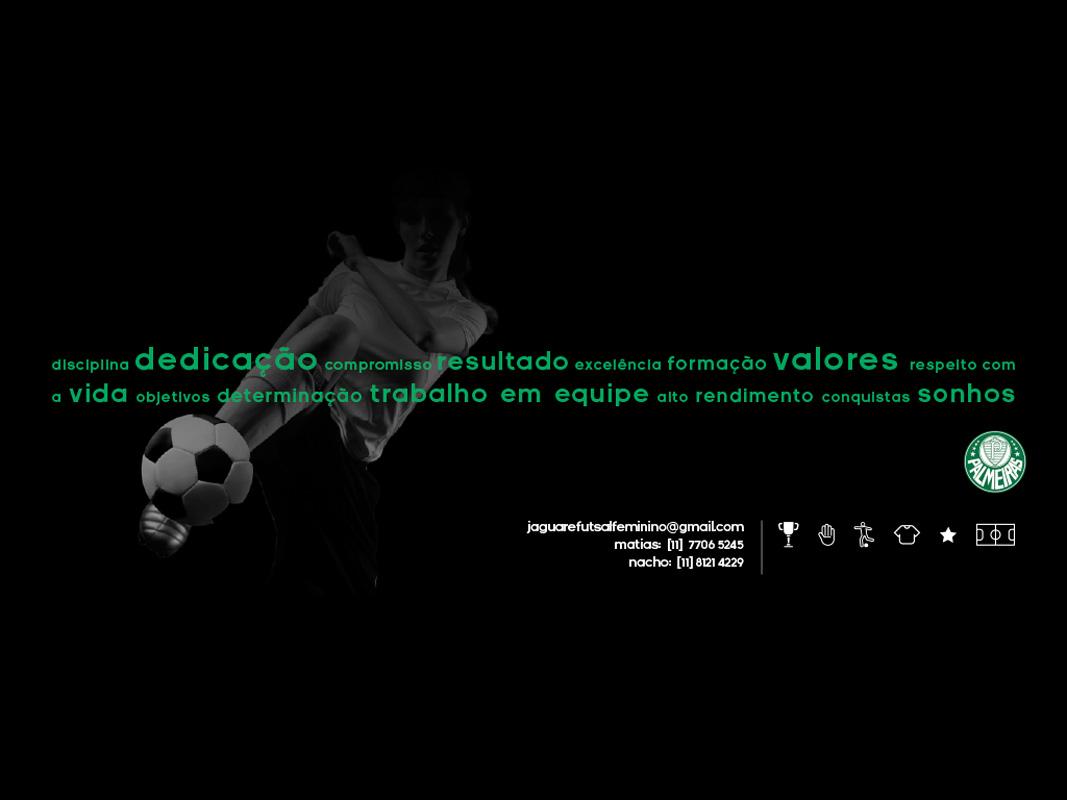 fenix presentation-2