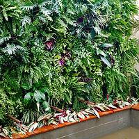 Jardim vertical Natural