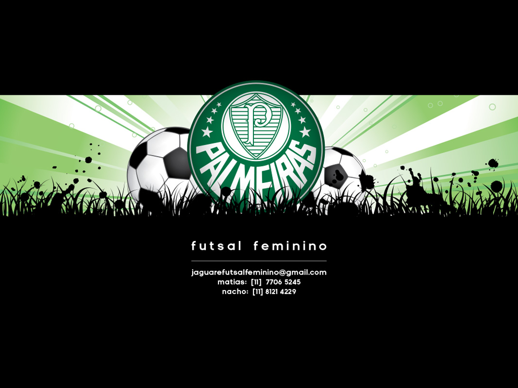 fenix presentation-1