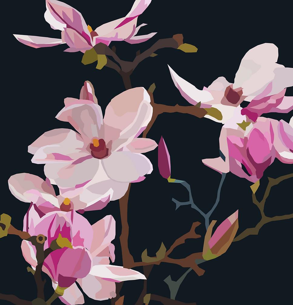 erika-20-magnolia.png