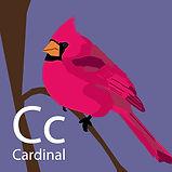 LetterBirdFIN402.jpg