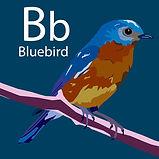 LetterBirdFIN40.jpg