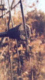 strings_edited.jpg