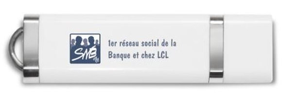 Clé USB (8 Go) logo et inscription SNB marine