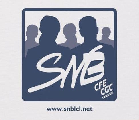 Tapis souris avec logo SNB marine