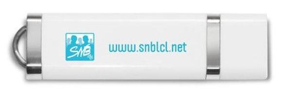 Clé USB (8 Go) logo et inscription SNB Turquoise