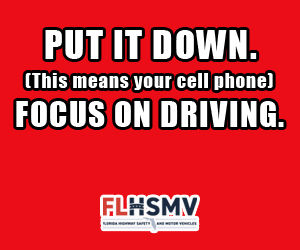 Put It Down-Focus On Driving PSA20.jpg