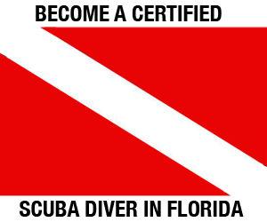 Scuba-BecomeACertDiverPSA19.jpg