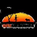 Catz Tours & Safaris