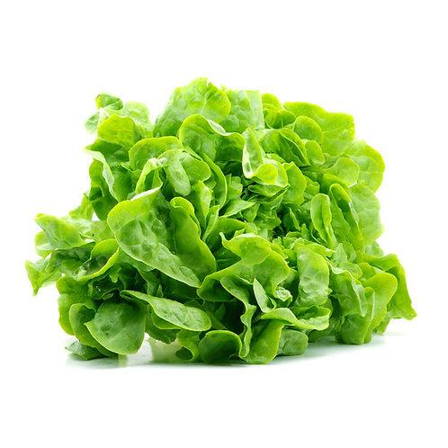 Salata Romania - cal I