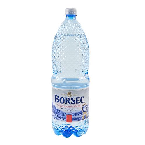 Borsec Apa Plata - 2l
