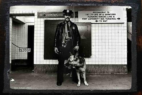 Wooden Plaque - Transit Cop