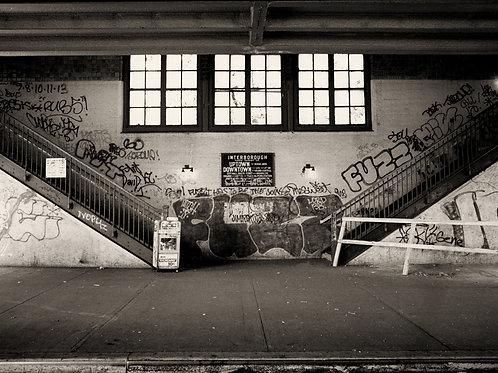 Photograph - Fuzz