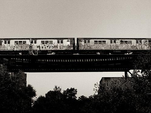 Photograph - West Farms