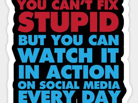 Social Stupidity
