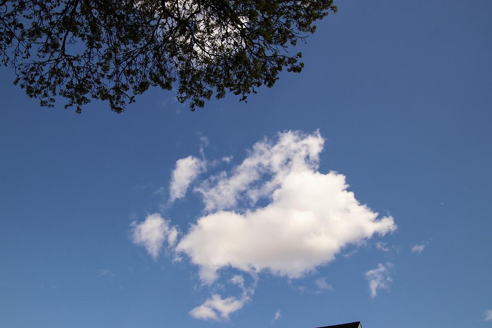 One Billowy Cloud