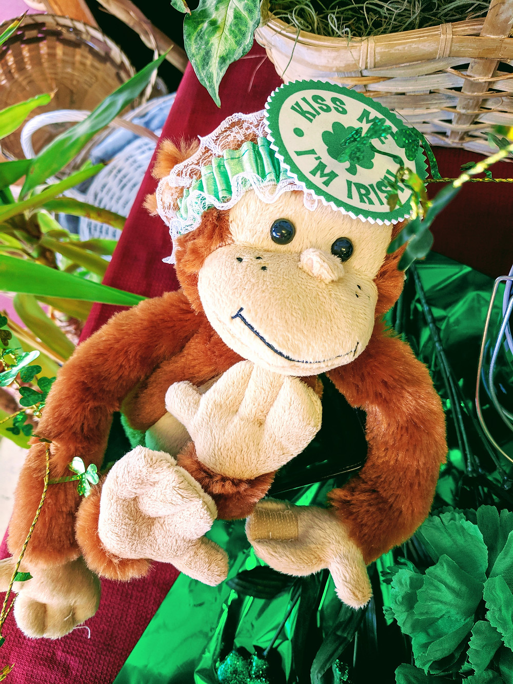 Monkeying Around on St. Patty's Day