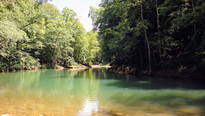 Down To The River We Go! Wilder TN, June 2021