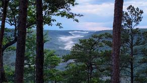 Fog Rolling In, Wilder Mountain TN, June 2021