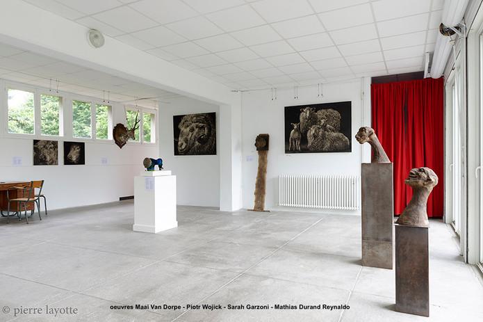 Manimal - Pierre Layotte  - oeuvres MVD