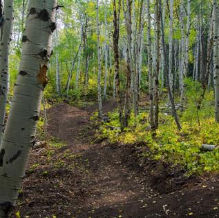 singletrack-trails-prospector-powderhorn_edited.jpg