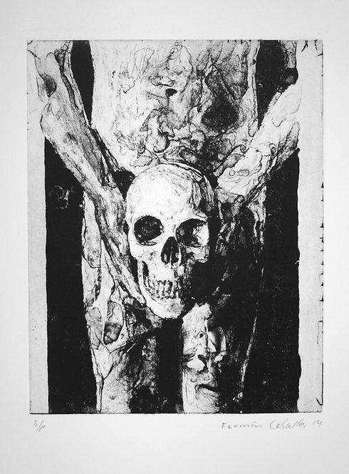 Holding Skull