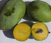 NC1 Pawpaw Inodan Banana