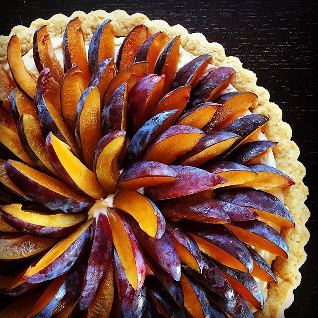 Stone fruit season is the best! Italian plum tart with almond custard and cream cheese filling. Plum
