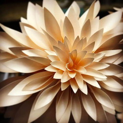 Paper dahlias for my wedding bouquet, first attempt! #paperflowers #papercrafting #dahlia #sawitonpi