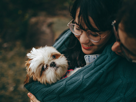 Shelter-in-Place & Evacuation Preparedness with Pets