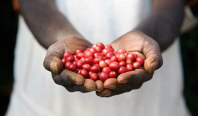 Making a Difference: Pachamama- Building a Farmer Owned Coffee Cooperative
