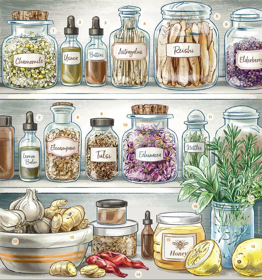 4662af36d903 Herbal Medicine Cabinet